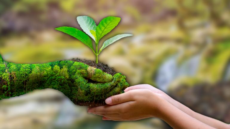 Suas pequenas atitudes de hoje moldam o futuro da nossa Terra. Dia Mundial do Meio Ambiente